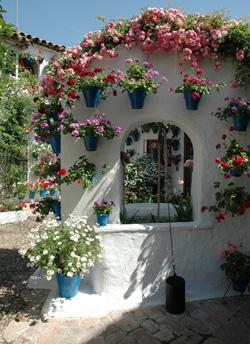 Hamilton Homes Blog Blog Archive Trip To Los Patios De Cordoba
