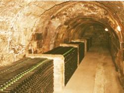 Bodegas - Spanish wine